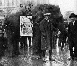 Elephant_Leeds_1924.jpg
