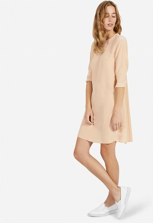 The Silk Long Sleeve Dress – Everlane.png