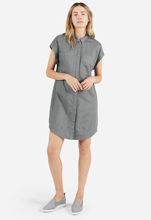 The Short Sleeve Shirt Dress – Everlane.png