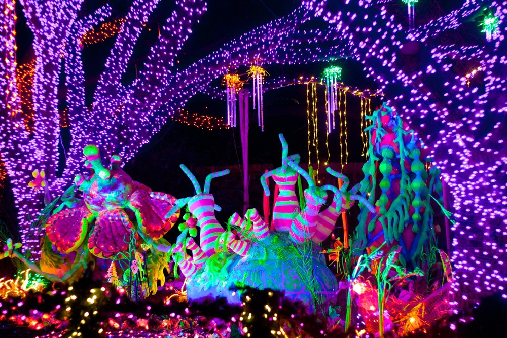 image gallery houston zoo lights 2015