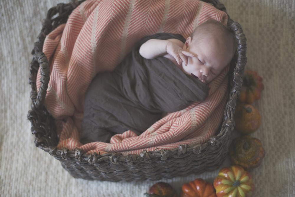 harrison newborn 18