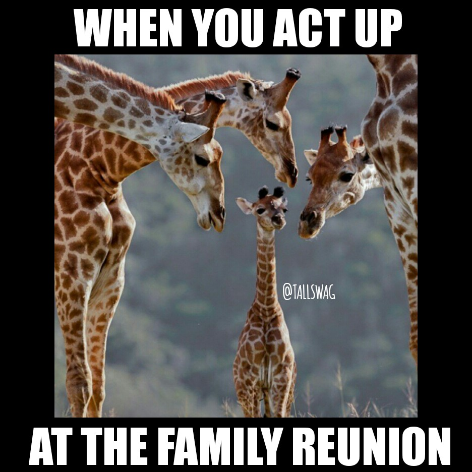 Image result for funny memes about family reunion