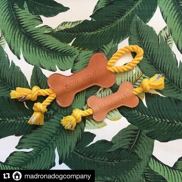 #Repost @madronadogcompany with @get_repost ・・・ We're feeling green today 🍀 And loving these new indoor/outdoor palm frond beds from @backupdesign 🍀 and the new mini @housedogge tug toys, beyond! 💚