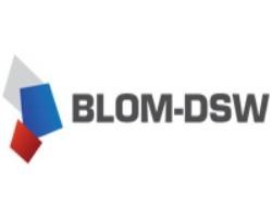 Logo DSW.jpg