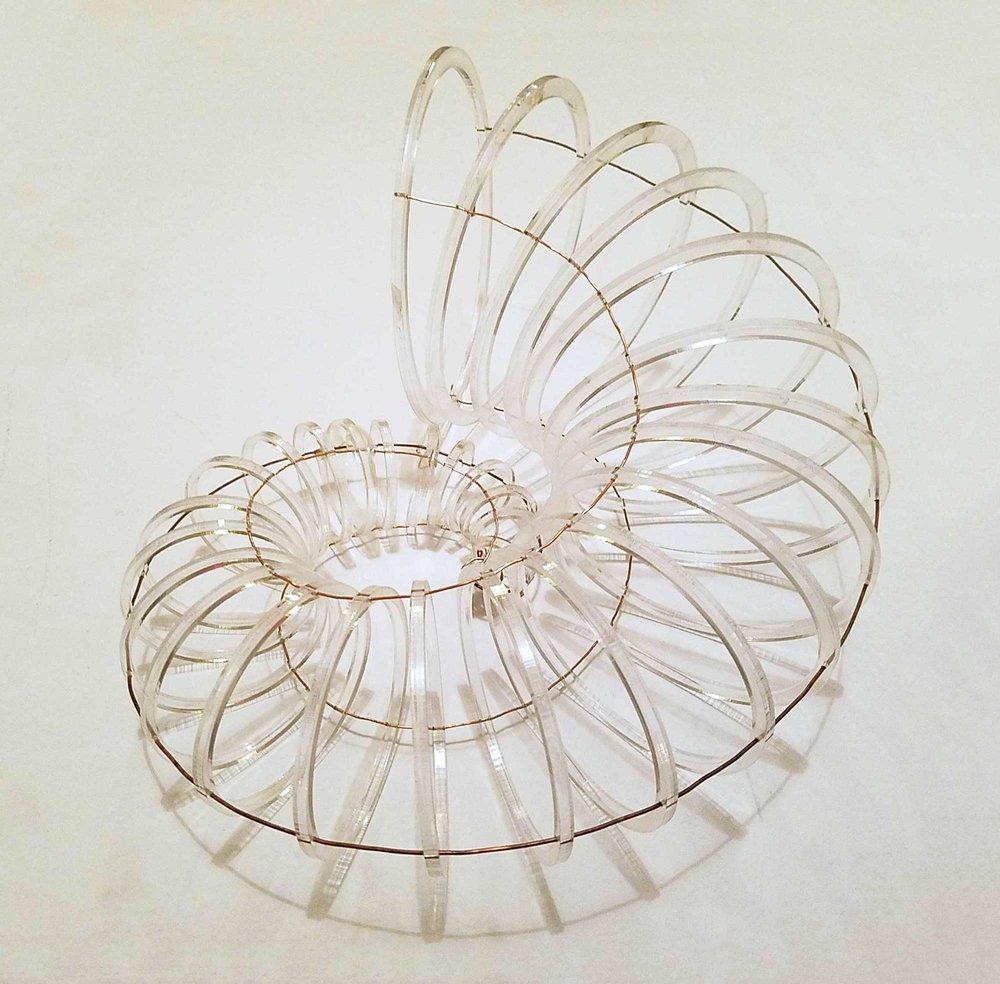 paulapart.omega.clearribs.bronze.plexiglas.plexi.acrylic.wire.skeleton.seashell.jpg