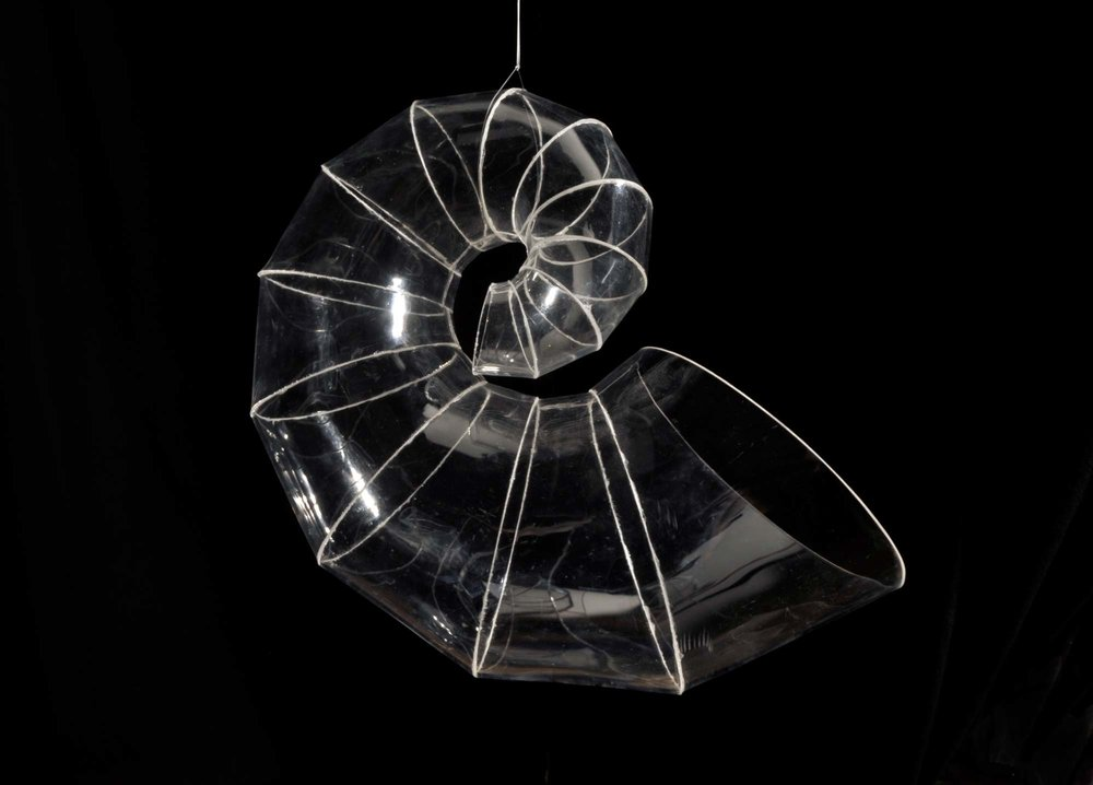 paulapart.omega.shell.clear.black.sculpture.1.jpg