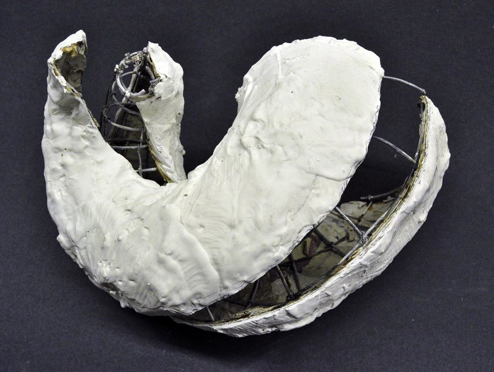 paulapart.shell.shelling.dissect.dissection.sculpture.plaster.steel.wire.paper(7).jpg