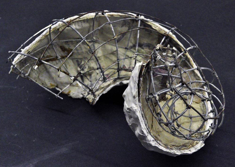 paulapart.shell.shelling.dissect.dissection.sculpture.plaster.steel.wire.paper(11).jpg