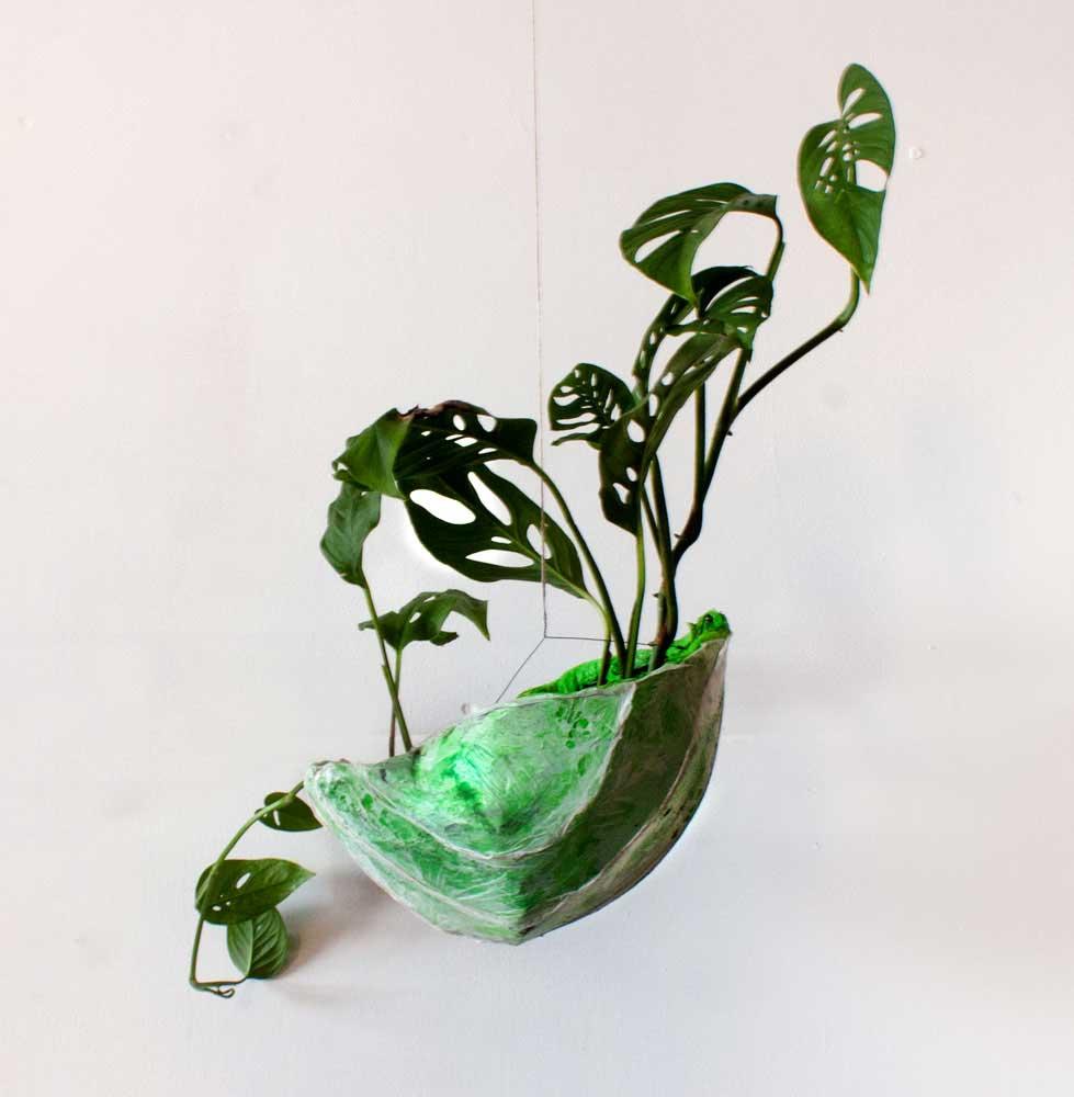 PAULAPART.EcoAge.EmmalinePayette.plant.shell.planter-(3).jpg