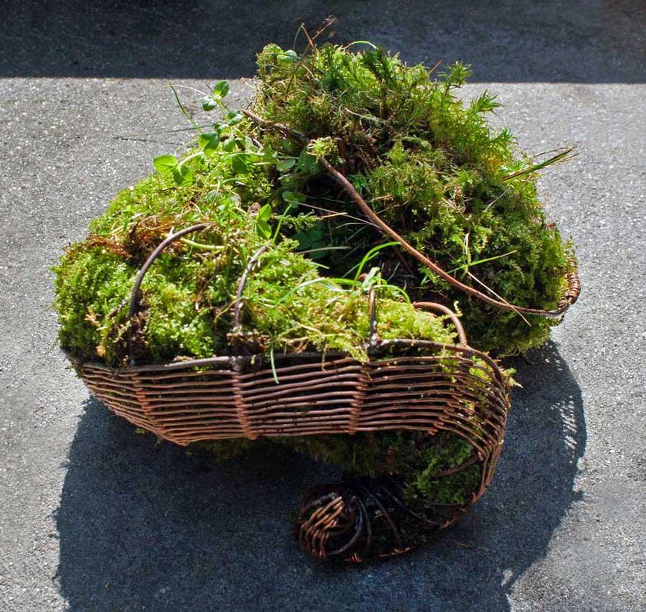 PAULAPART.EcoAge.EmmalinePayette.plant.shell.planter-(1).jpg