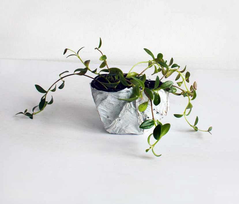 PAULAPART.EcoAge.EmmalinePayette.plant.shell.planter-(2).jpg