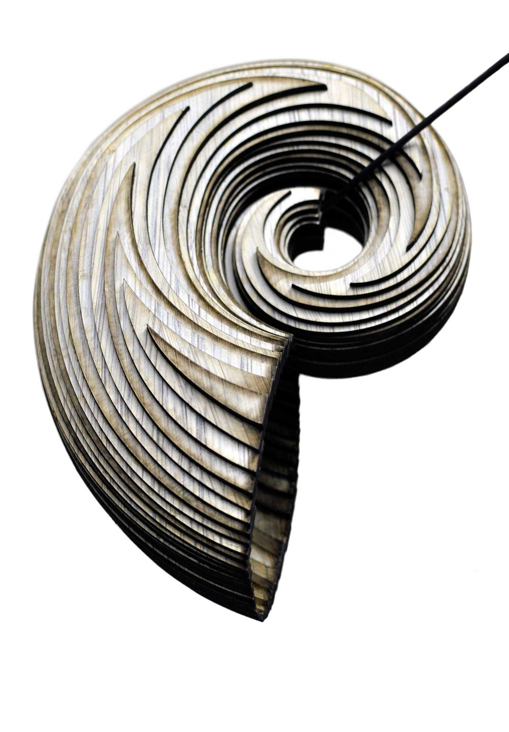nauti.ripple.nautilus.acoustics.acoustic.spiral.seashell.soundshell.6.jpg