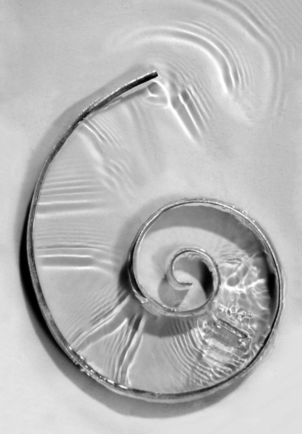 Paulapart_om_shell_ripple_acoustic_spiral_rippletank