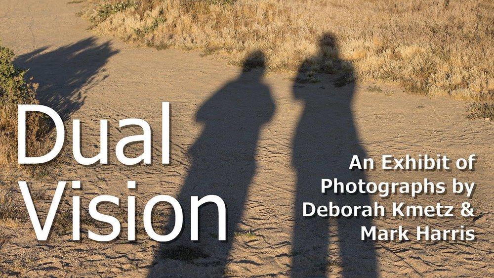 Dual Visions.jpg