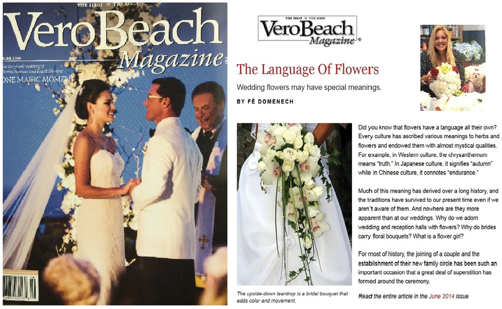 Vero Magazine.jpeg