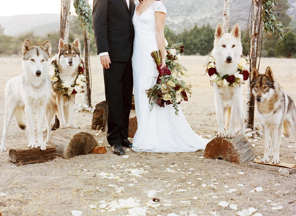 Wolf Wedding.jpg