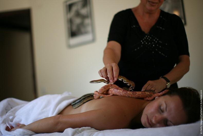 snake-massage10