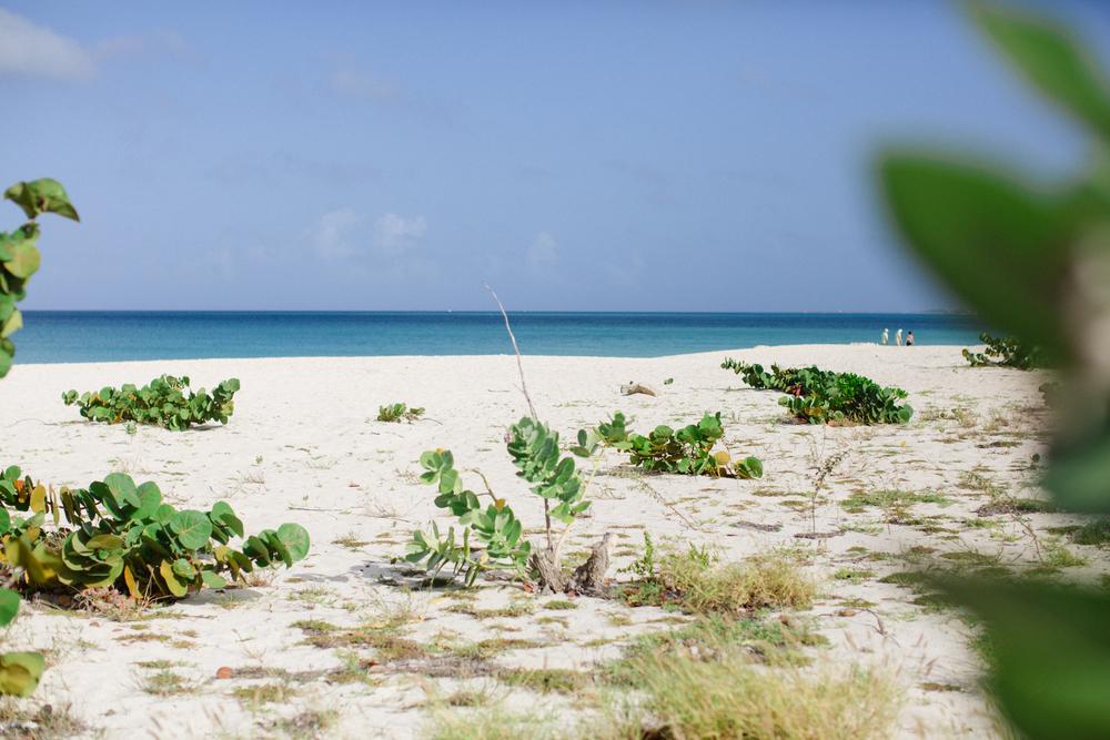 Aruba_JDP-9096.jpg