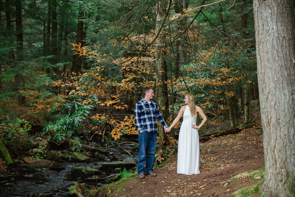 Scranton PA Engagement Session Photos Photographers_JDP-18.jpg