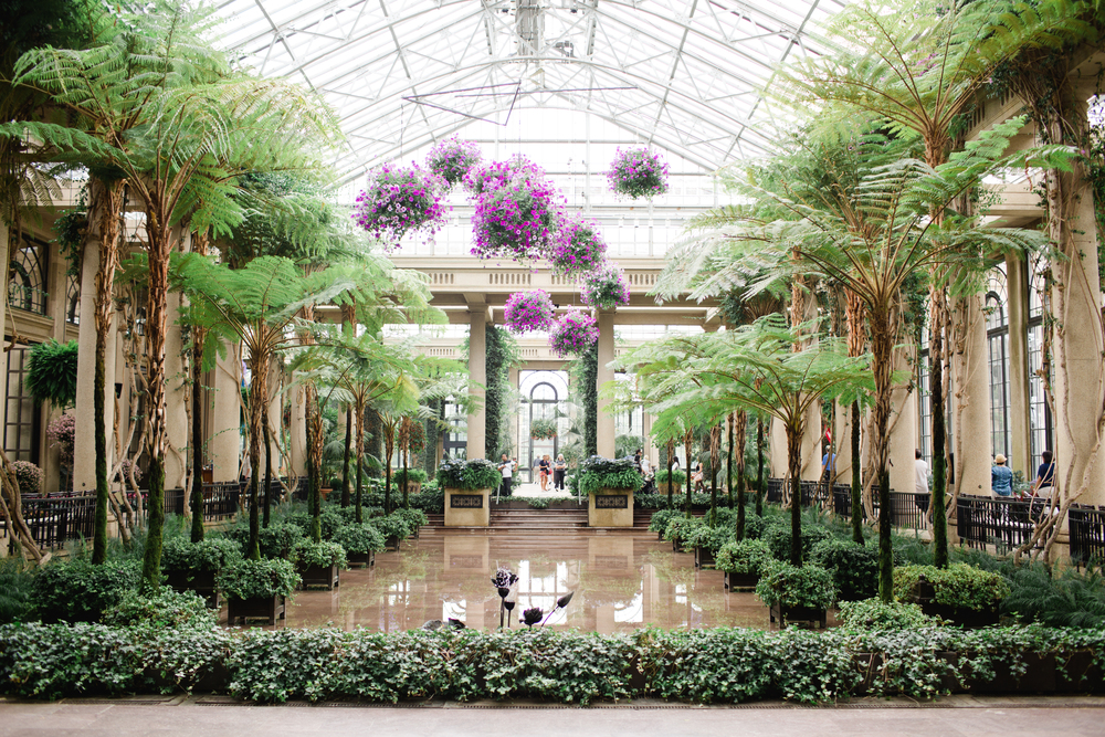 Longwood Gardens Engagement Photography Jordan DeNike_JDP-2.jpg