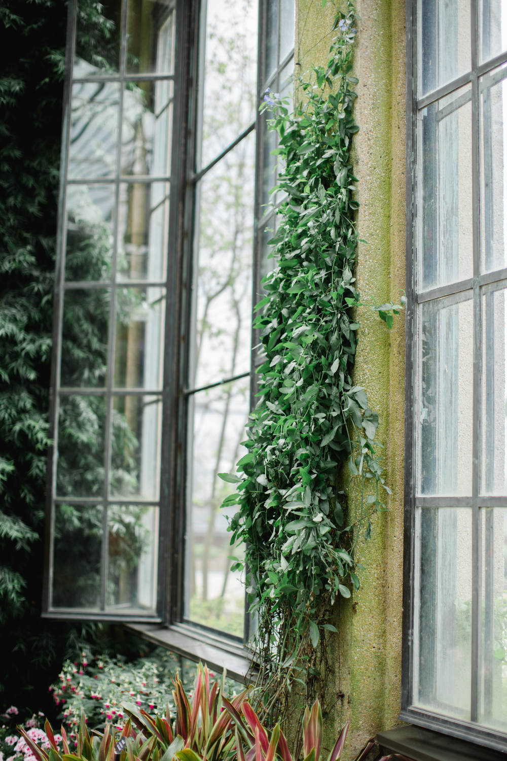 Longwood Gardens Engagement Photography Jordan DeNike_JDP-14.jpg