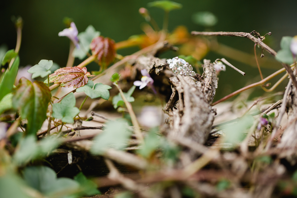 Scranton Wilkes Barre PA Engagement Photographers Hillside Farms Photos_JDP-21.jpg