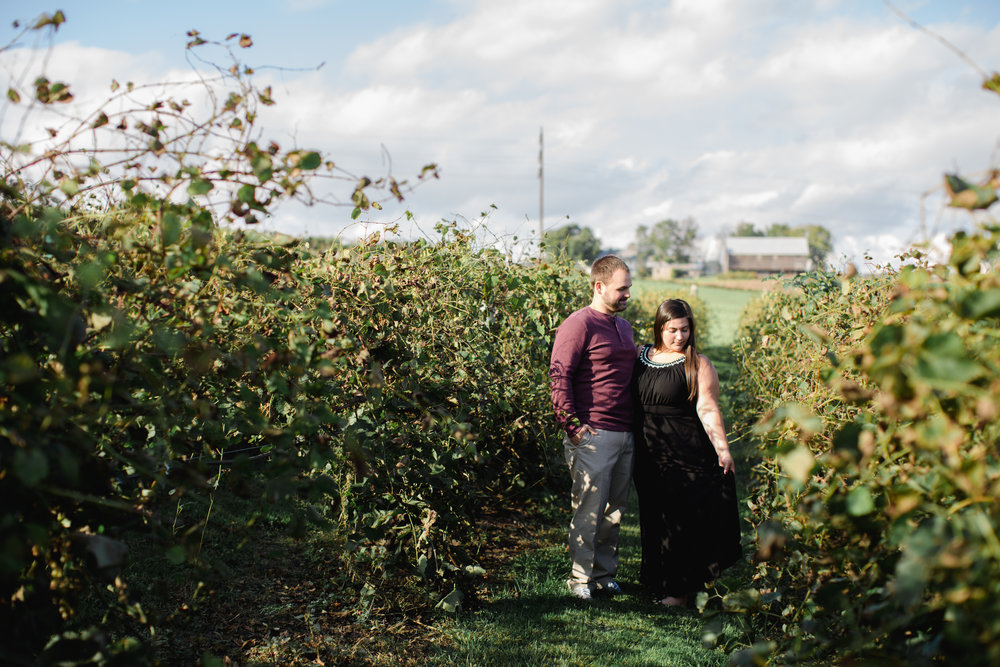 Scranton Pittsburg Hershey PA Wedding Photographers Fall Engagement Session_JDP-7575.jpg