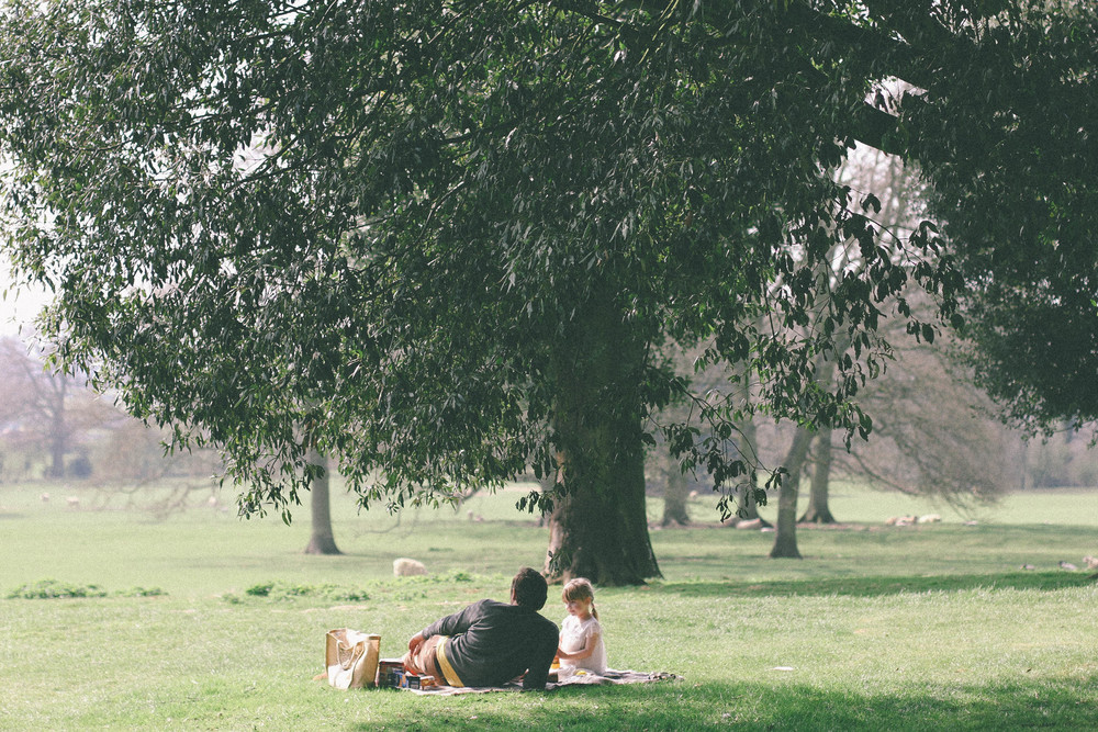 picnic under the tree
