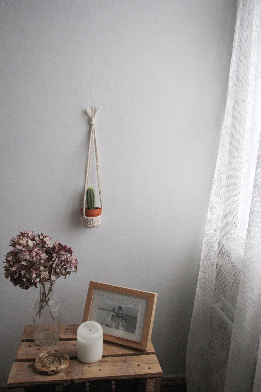 Mini plant hanger