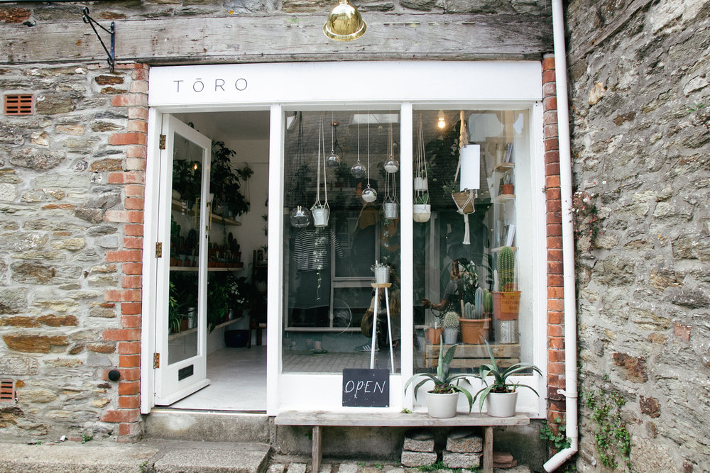 toro studio | carolyn carter blog
