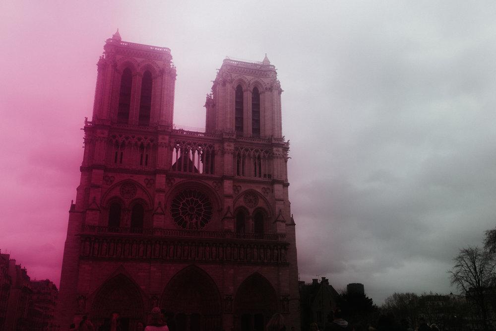 Notre Dame + cellophane