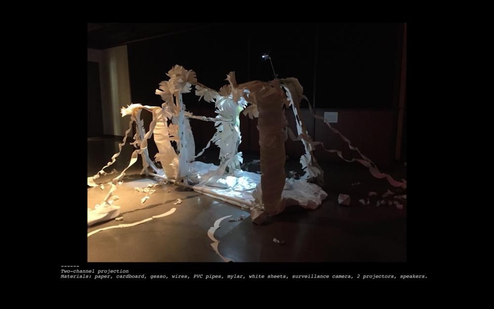 Cinematic Installation (2017)