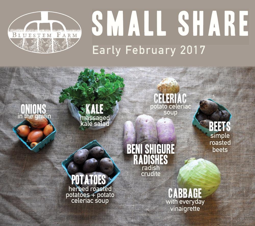 Early February -SM.jpg