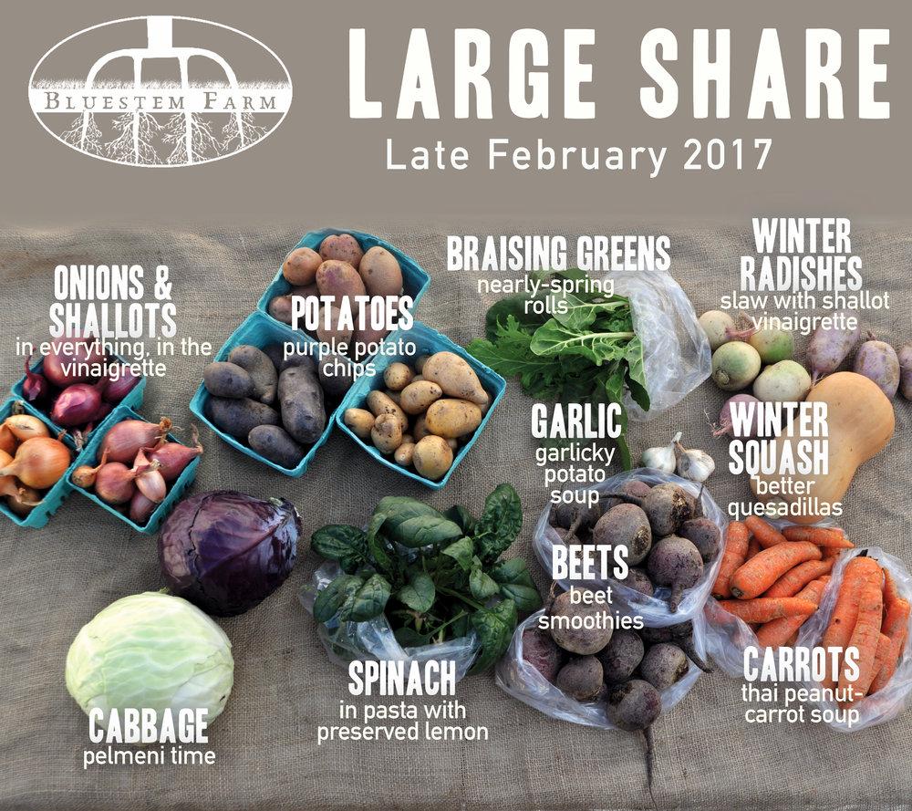 Late Feb -LG.jpg
