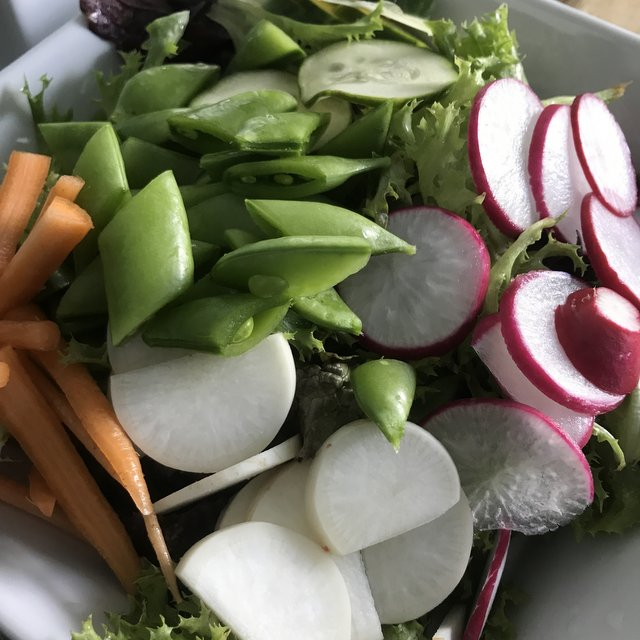 Salad with Radishes and Greens