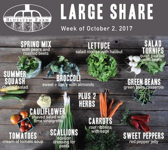 Large Share - Week 17