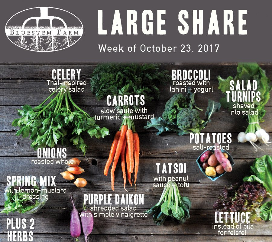 Week 20 Vegetable Share