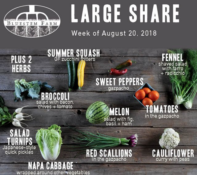 Large Share
