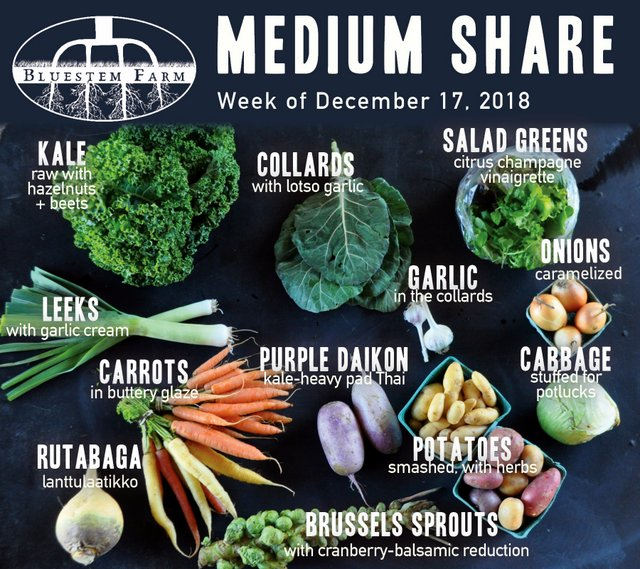 Medium Share - Late December 2018