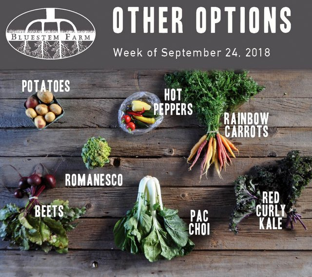 9.24.18 -OTHER.jpg