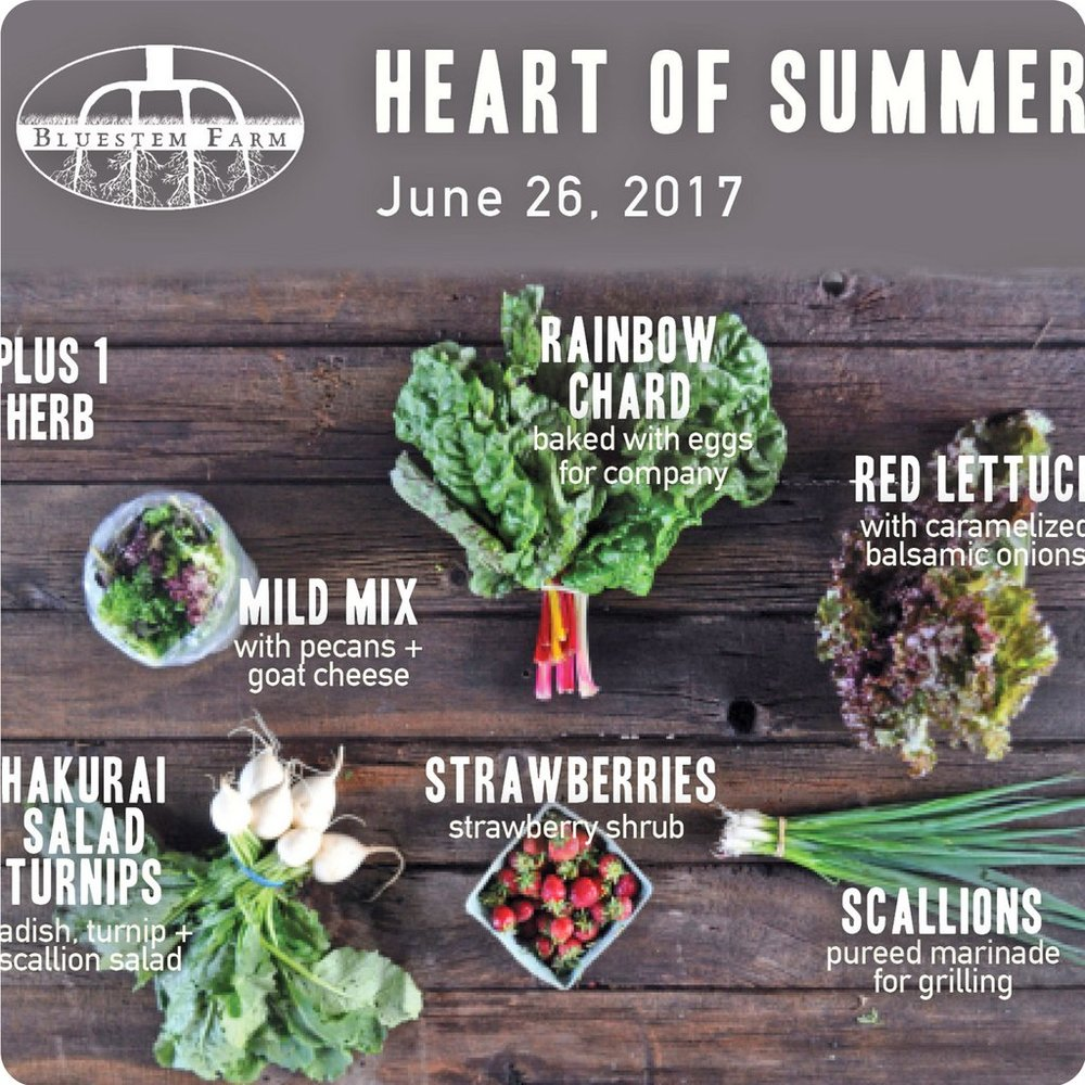 Heart of Summer Example