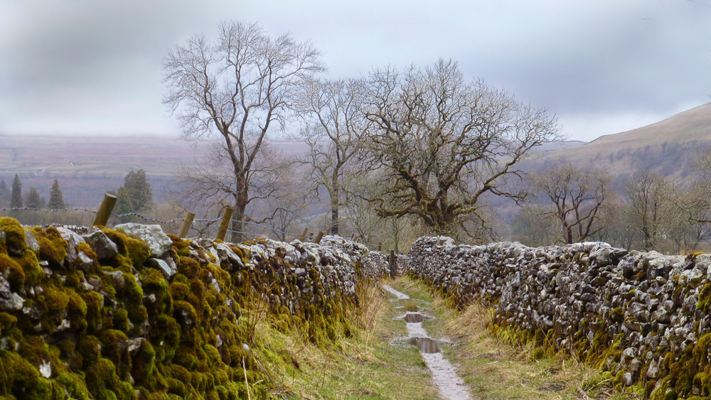 Wet path and leaden skies in Wharfedale