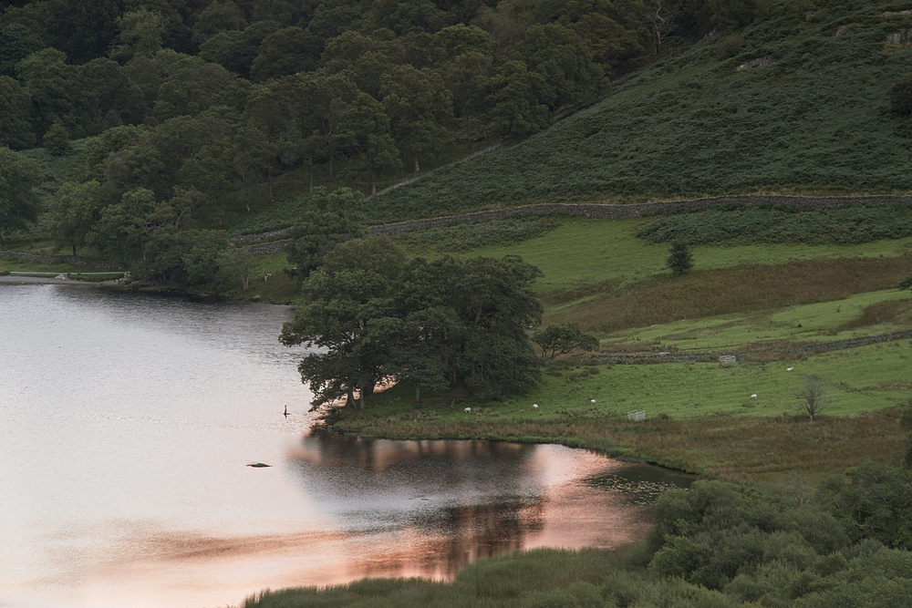 Pink dawn on Rydal water
