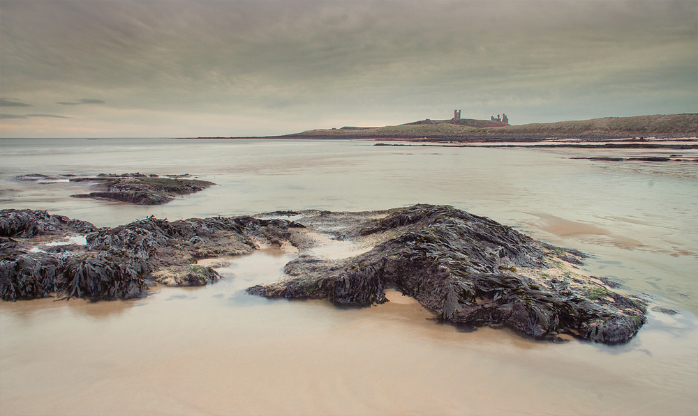 Low Tide at Dunstanburgh Castle