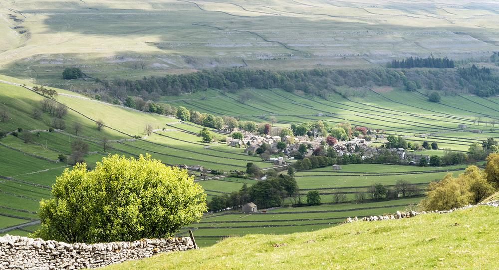 Wharfedale view