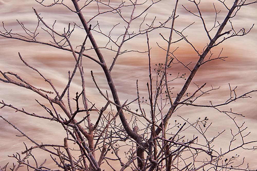 River Ure detail