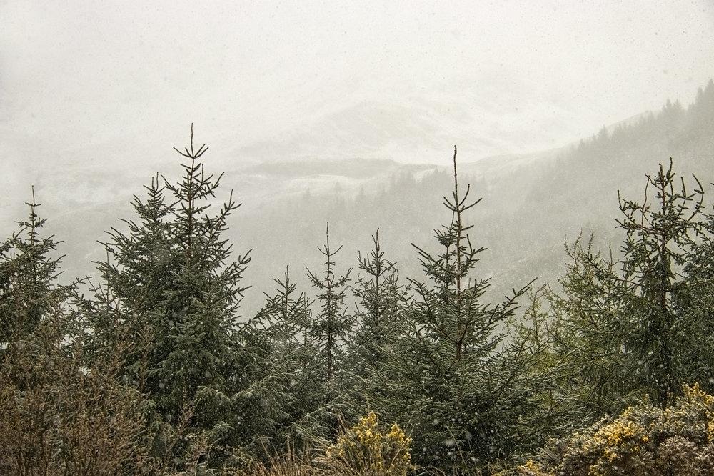 Snowing on DruimSgurr nan Cabar