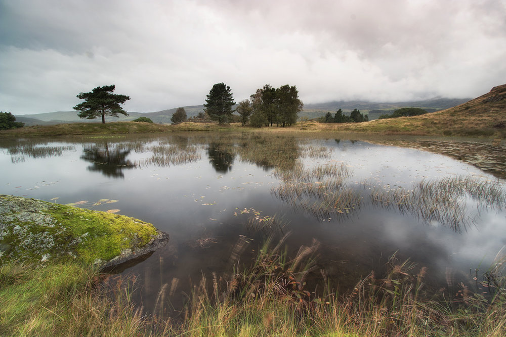 Rainy Kelly Hall Tarn