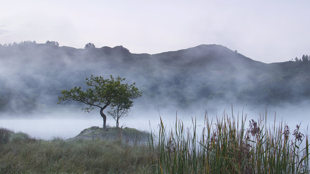 Friday - morning mist on Rydal Water