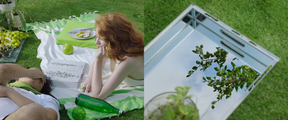Grass_mirror.jpg